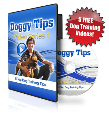 5-Free-Doggy-Tips-Videos-Flash-350